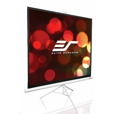 Elite Screens T113NWS1