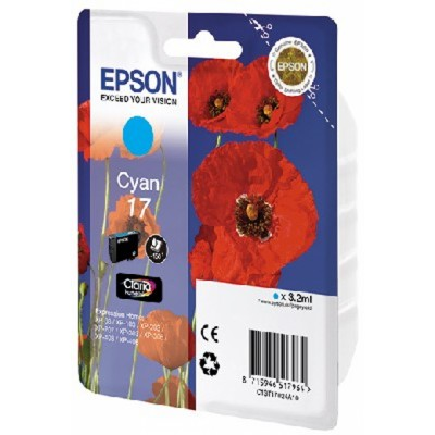 Epson C13T17024A10