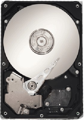 Seagate ST310005N1D1AS