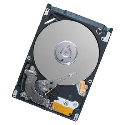 Seagate ST9160411AS