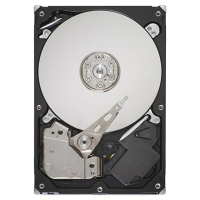 Seagate ST3160316AS