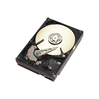 Seagate ST3320820ACE